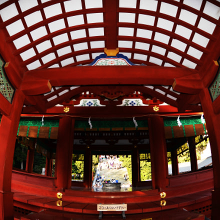 Shrine in Japan, Nikon D7000, AF DX Fisheye-Nikkor 10.5mm f/2.8G ED