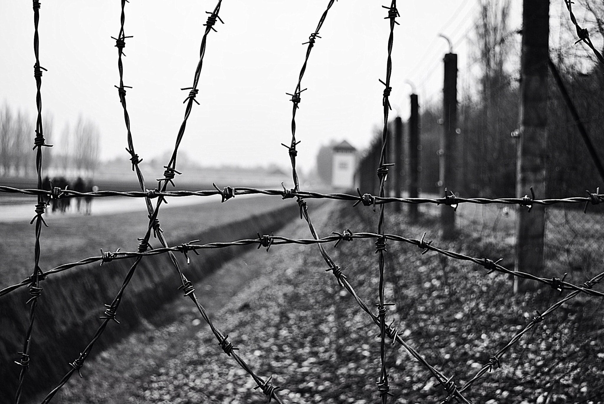 Photograph Sadness behind the wire by Glen Manby on 500px