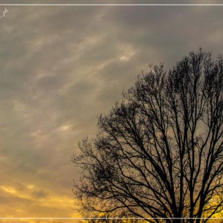 Minimal Dawn, Nikon COOLPIX W100