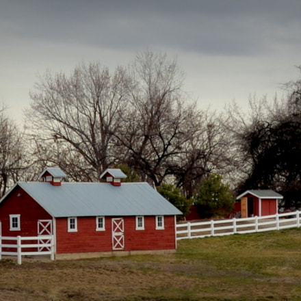 Down On The Farm, Nikon D610