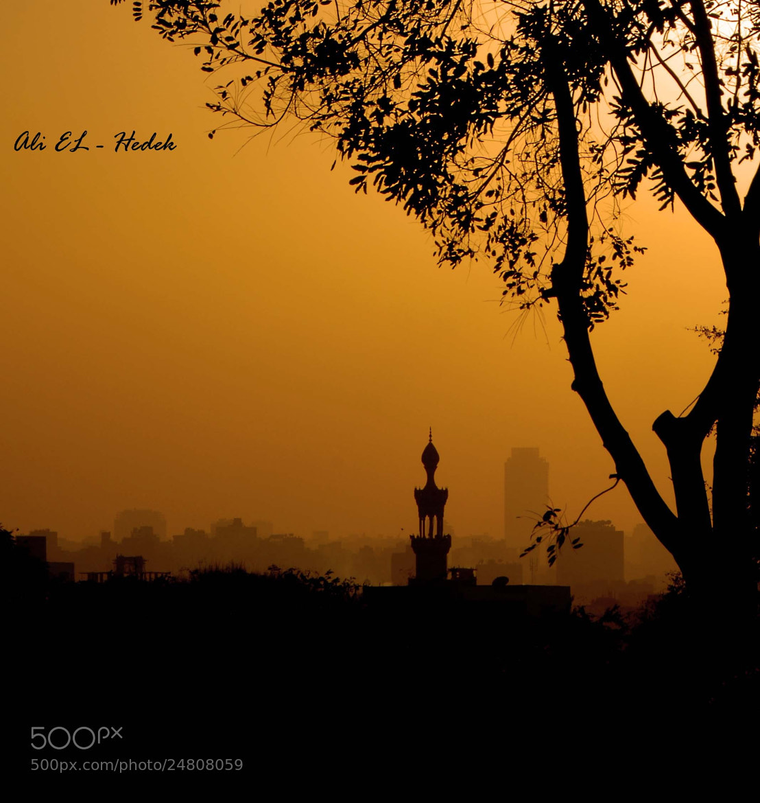 Photograph Composition  by Ali El Hedek on 500px