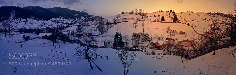 Photograph Sadova  by alina stancioiu on 500px