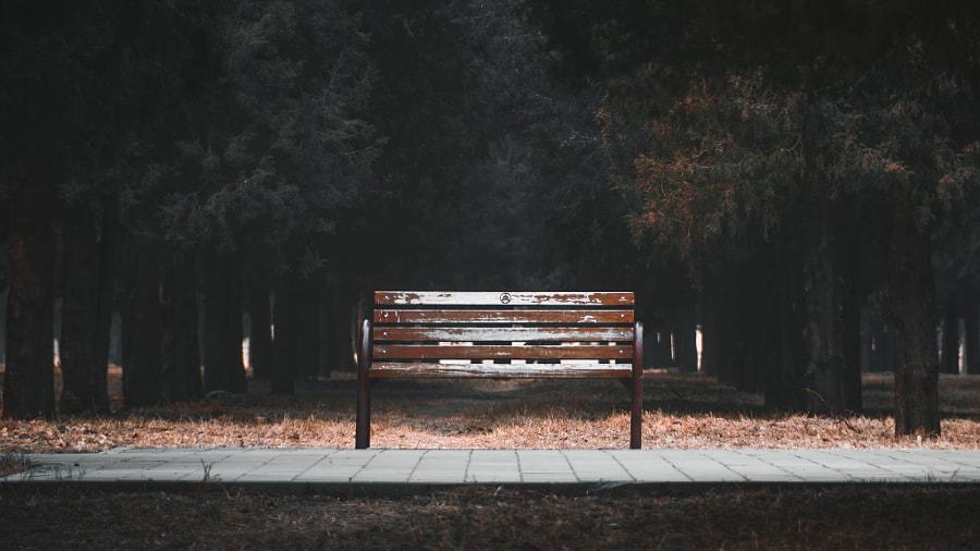 静候一把长椅——北京天坛公园, автор — 小咩太Mietai  на 500px.com