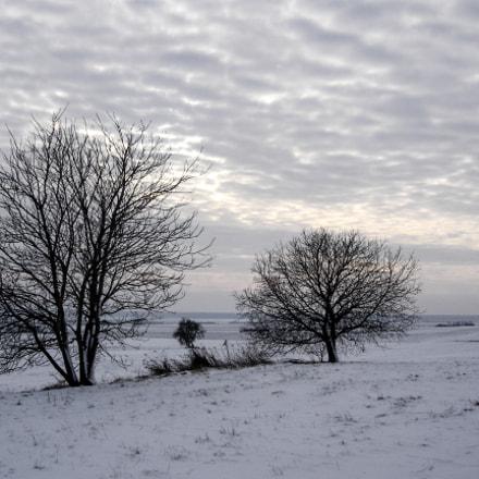 Winter_1, Sony DSC-P93