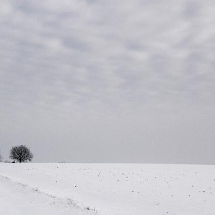 Winter_3, Sony DSC-P93