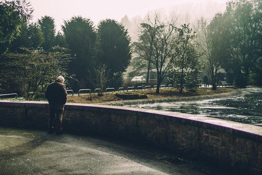 http://weinheim.photos, автор — HatCat Photography на 500px.com