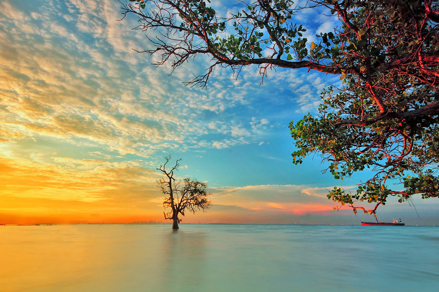 Photograph alone in the sea by Uda Dennie on 500px