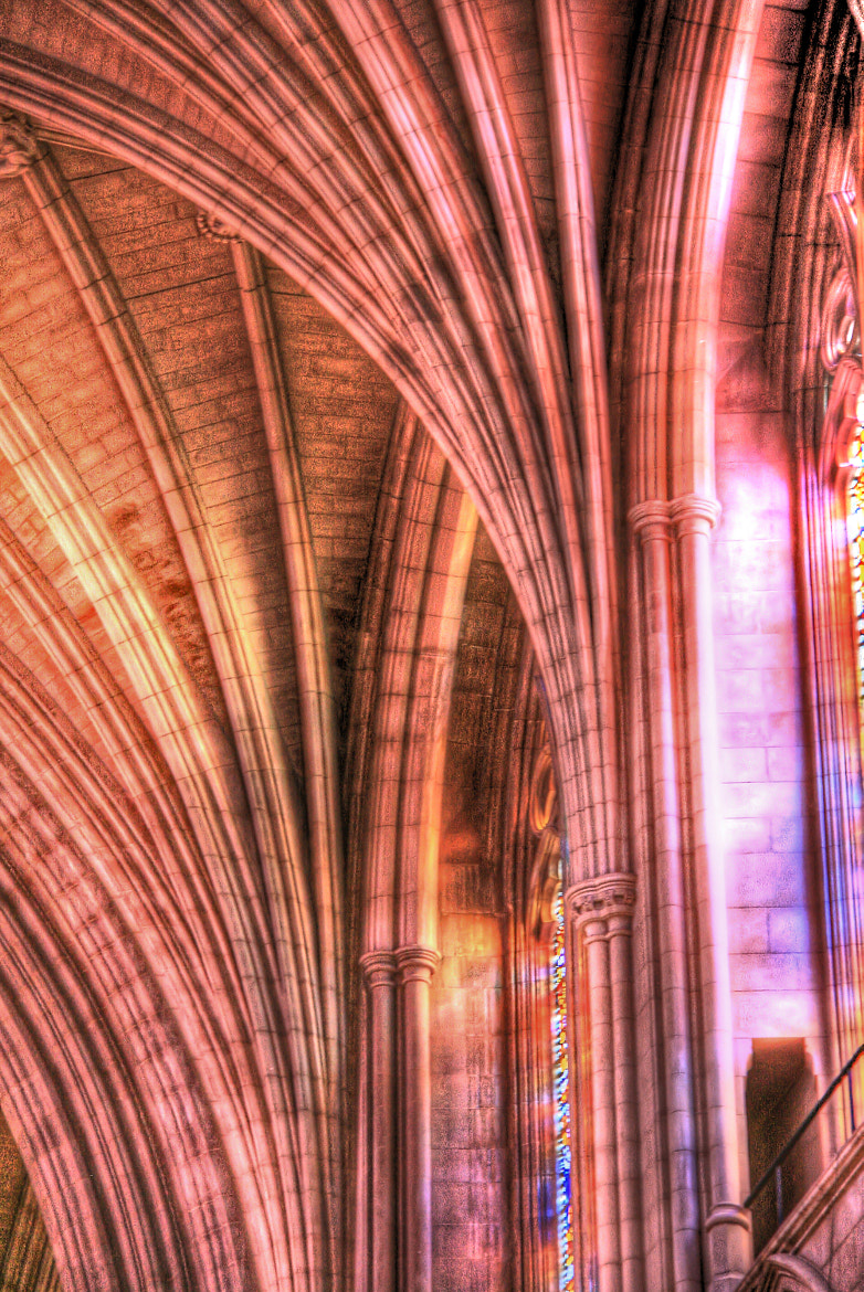 Photograph Colorful Buttresses by Laura Bellamy on 500px