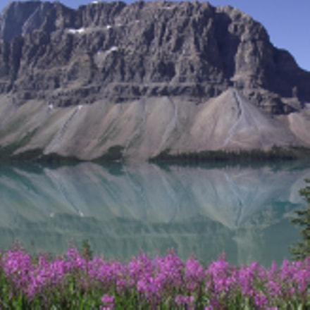 Bow Lake, Banff National, Fujifilm FinePix S1800
