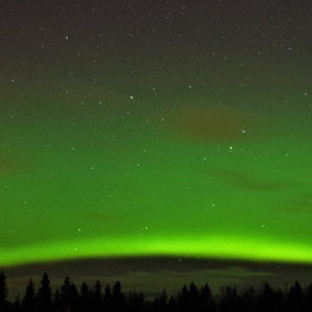 Green eve, RICOH PENTAX K-1, Tamron SP AF 10-24mm F3.5-4.5 Di II LD Aspherical [IF]