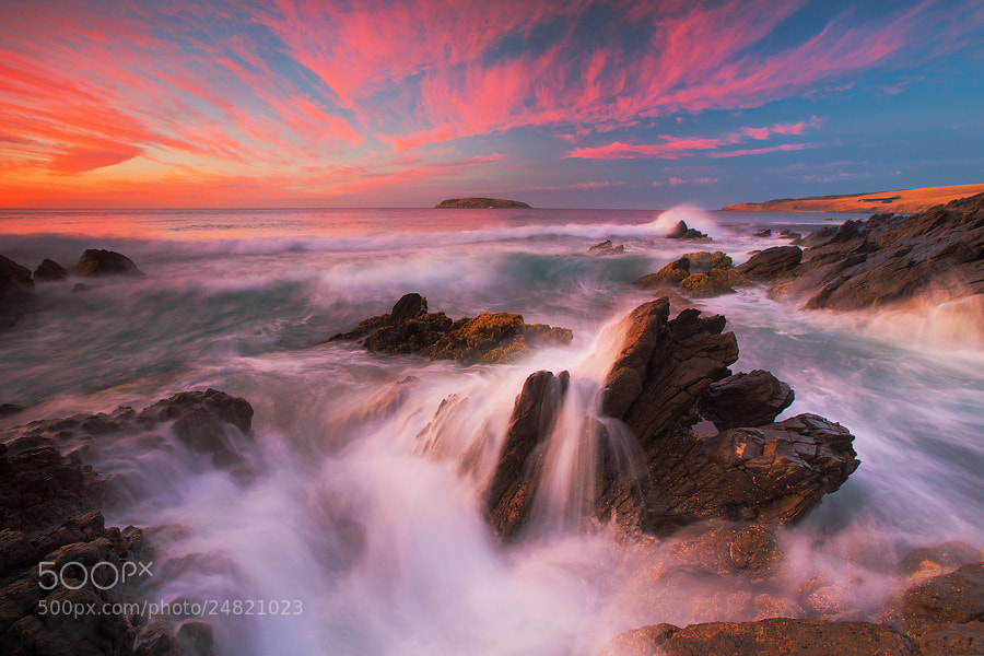 Photograph Last Gasp by Dylan Toh  & Marianne Lim on 500px