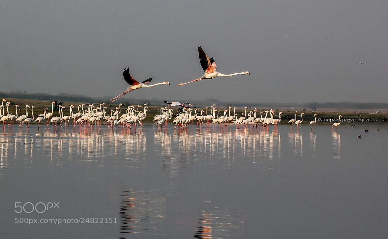 Photograph Jus u n me ...lets go by Deepak Pawar on 500px