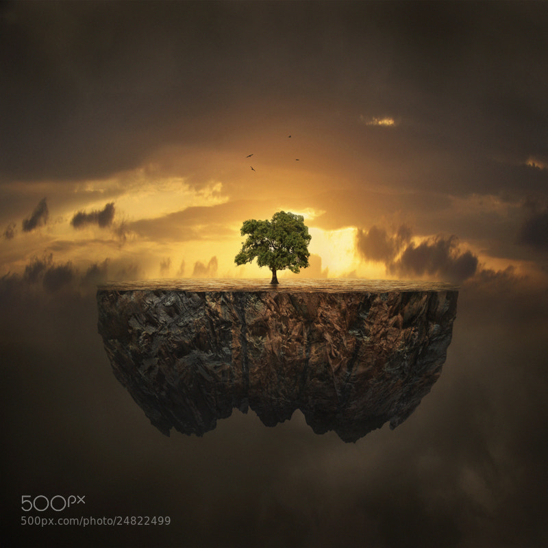 Photograph Life by Hossein Zare on 500px