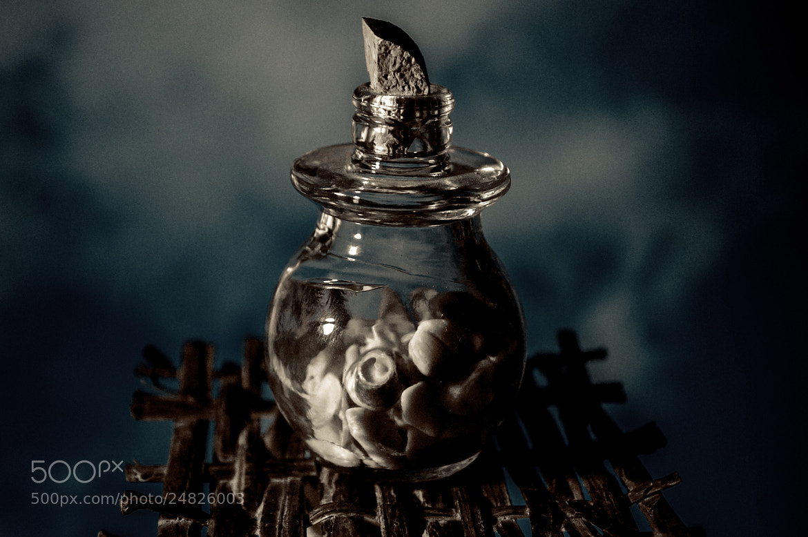Photograph The Bottle by Longland  River on 500px