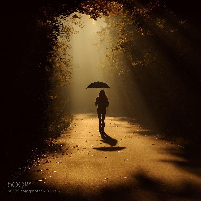 Photograph sunny rain by Sebastian Luczywo on 500px