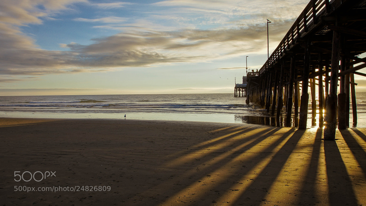 Photograph Winter, Southern California-Style III by Erik Anderson on 500px