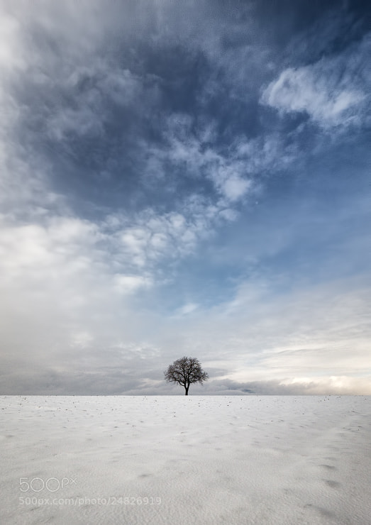 Photograph Loneliness by Stéphane ABCDEF on 500px