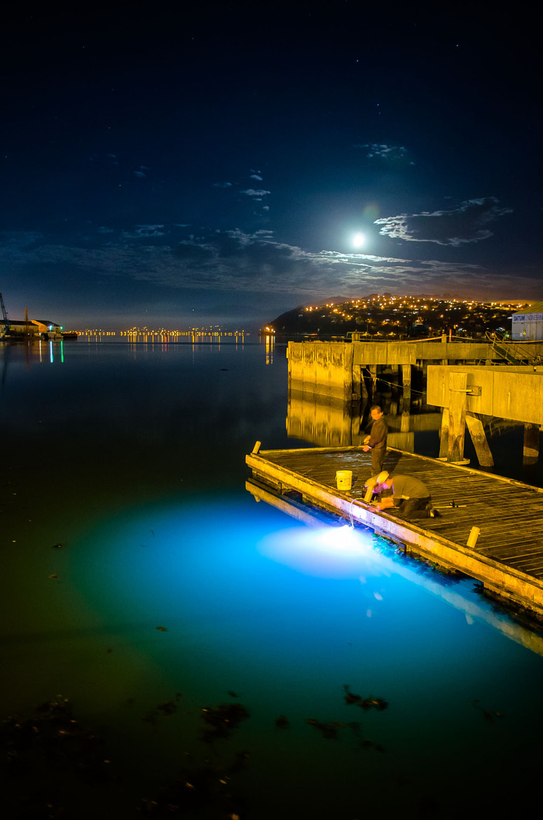 Photograph Fishing at Midnight by Paul Le Comte on 500px