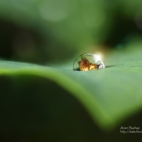 Light in the heart. by Anan Suphap (gbdq)) on 500px.com