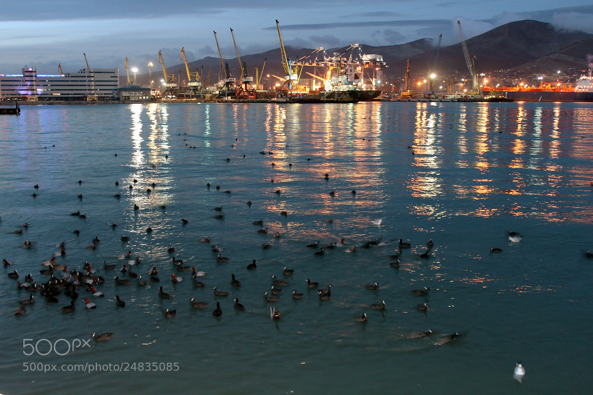 Photograph Novorossiysk port by INNA SAYGALO on 500px