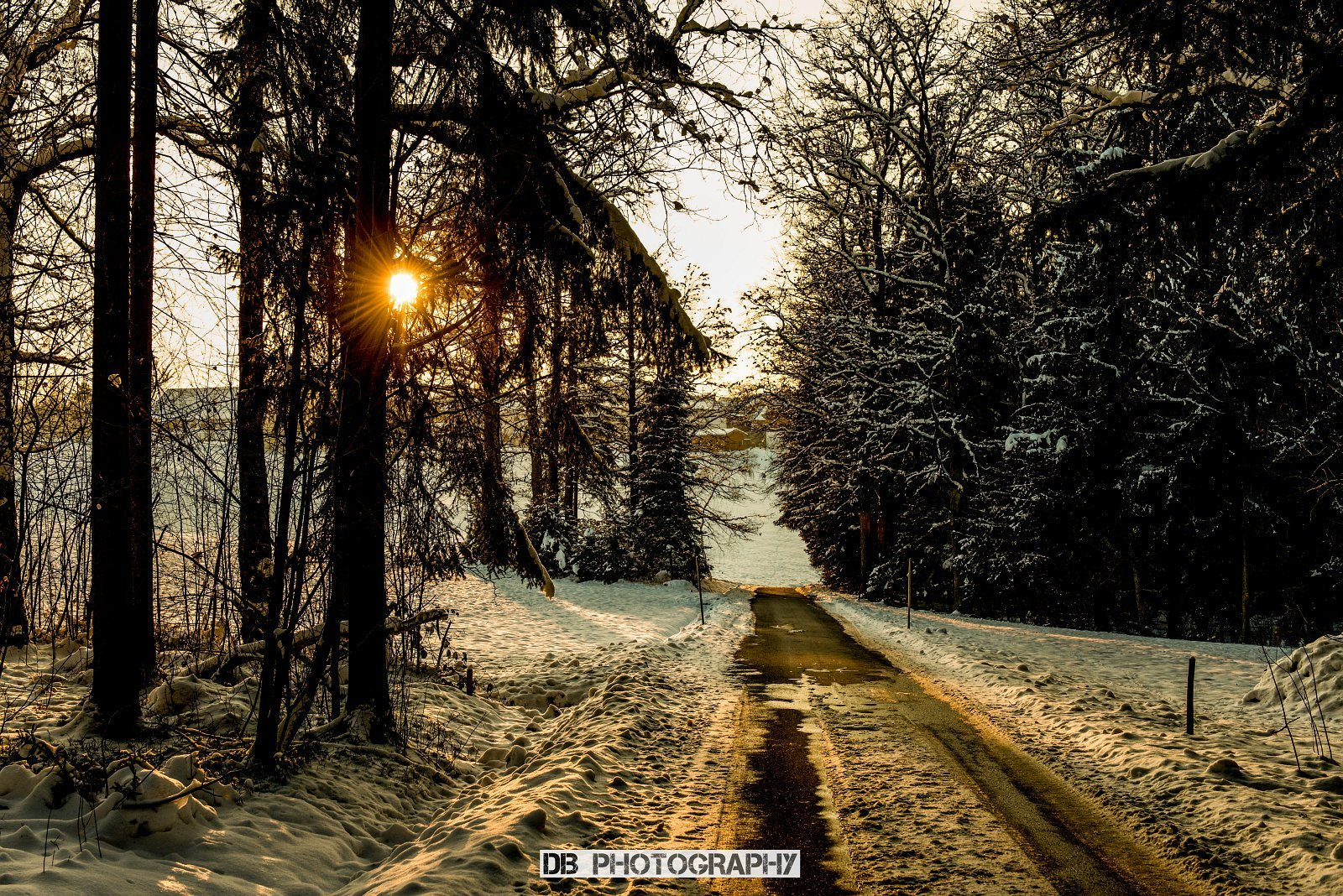 Photograph Sunny winter day by Hans Weichselbaumer on 500px