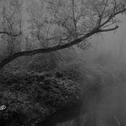 Niebla en el R, Canon IXUS 117 HS