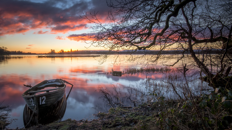 Photograph Menteith Sunrise... by David Mould on 500px