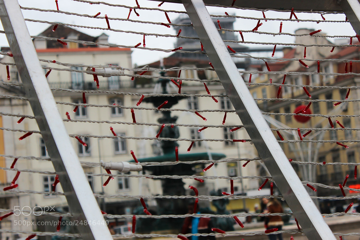Photograph Christmas on Rossio III by Marie Kuhn on 500px