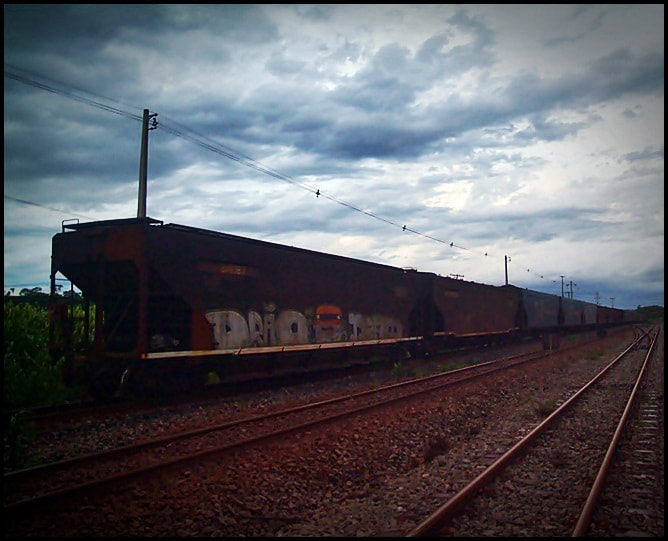 Photograph The Train by Beto Simões on 500px