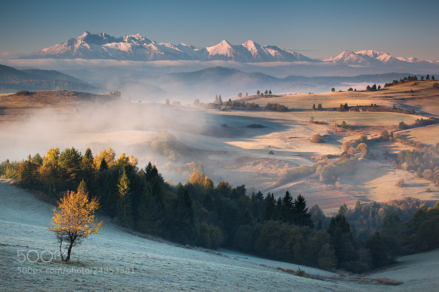 Photograph Frosty morning by Maciej Kolber on 500px