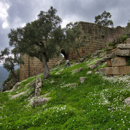 The Theatre of Alinda