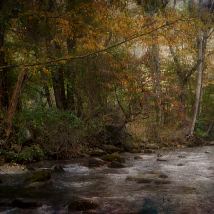 Rough Butt Creek, Fujifilm FinePix XP60