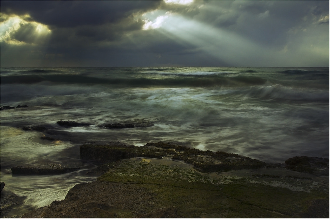 Photograph Before the storm by Victoria Solodar on 500px