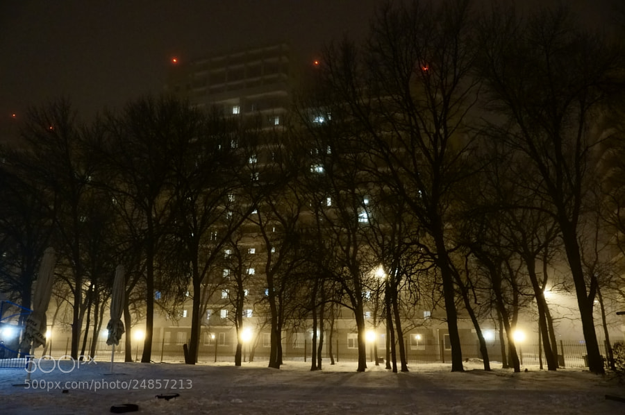 Photograph Winter evening... by Grigory Nesvetaev on 500px