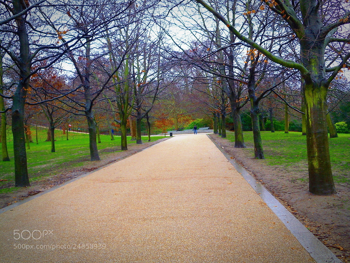 Photograph The Way to Greenwich by Francisco Hernandez on 500px