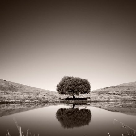 Otago, New Zealand, Nikon D700, AF-S Nikkor 24mm f/1.4G ED