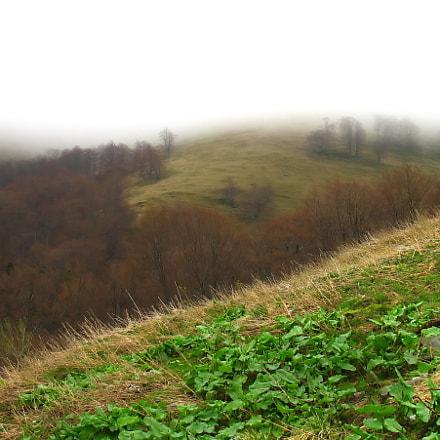 Carpathian mountain valleys, Canon POWERSHOT A620