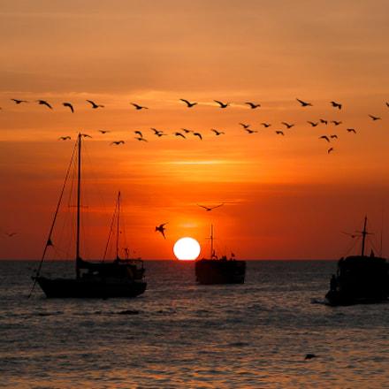Venezuela sunset, Nikon E5700