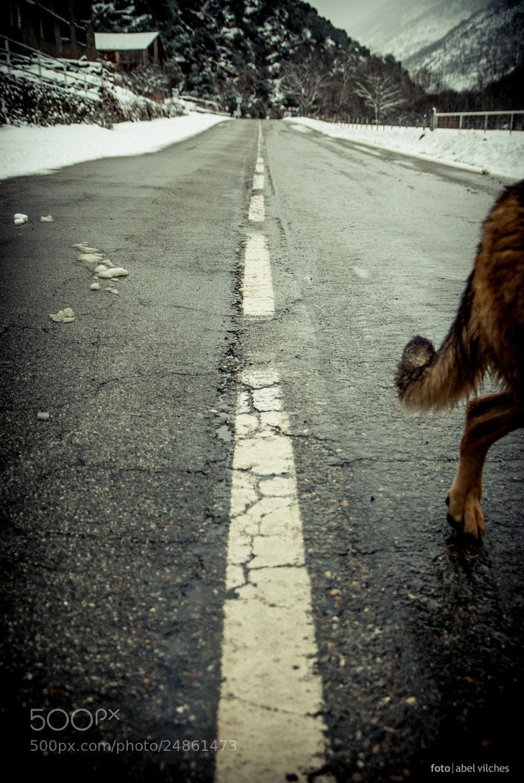 Photograph walking away by Abel Vilches Prat on 500px
