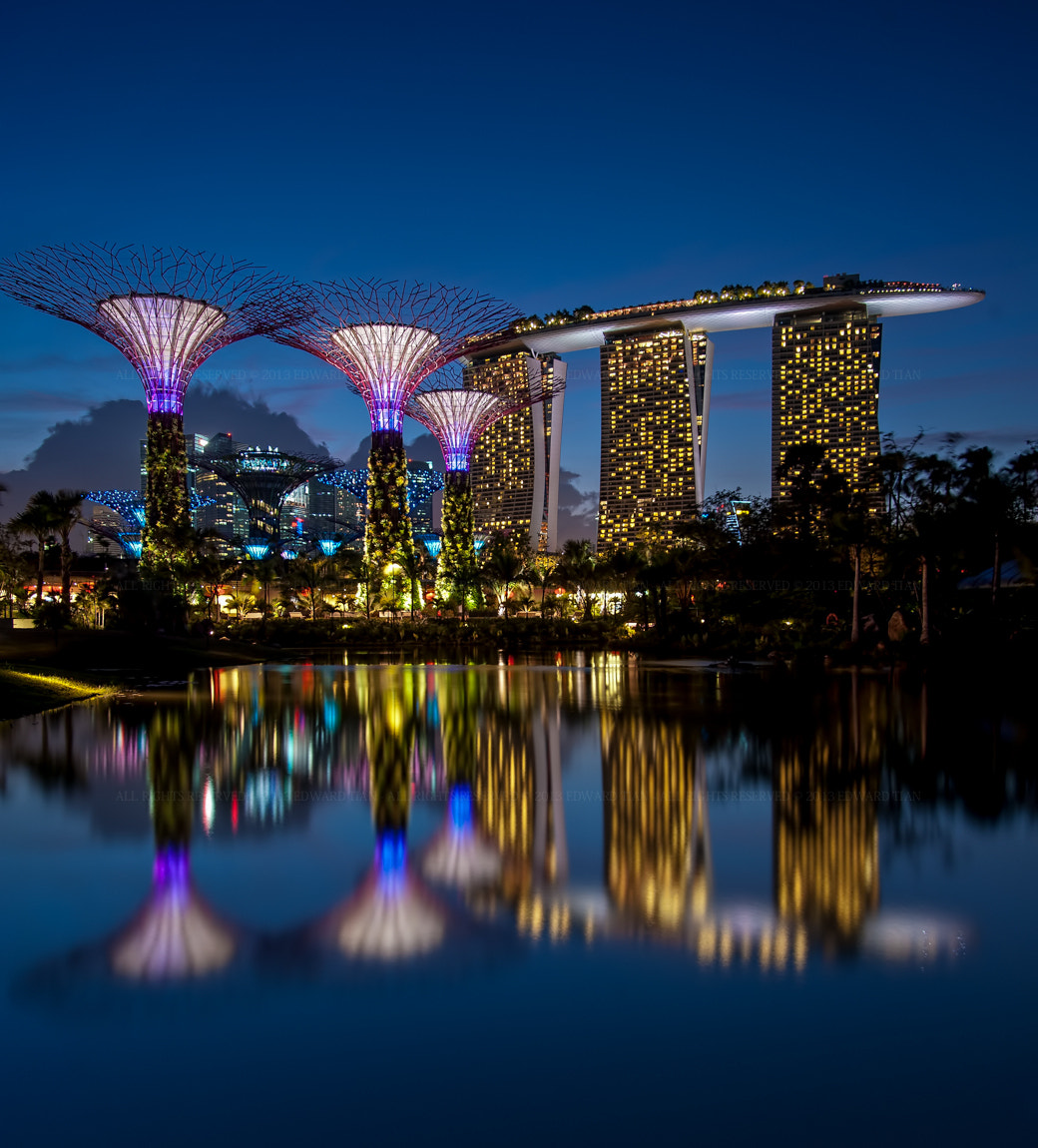 Photograph Gardens by the Bay by Edward Tian on 500px