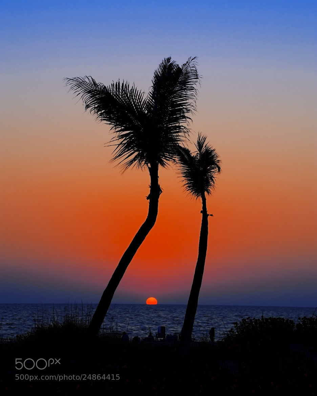 Photograph Sanibel, Florida Sunset by Jeff Scozzafava on 500px