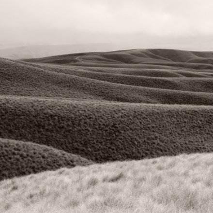 Otago, New Zealand, Nikon D700