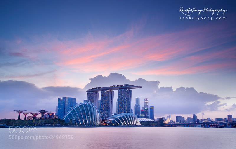 Photograph Pink by Ren Hui Yoong on 500px
