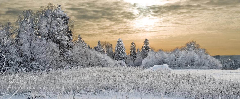 Photograph A Beautiful Story by Alexzandr Kuznetsov on 500px