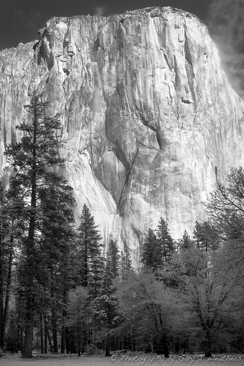 Photograph El Capitan by Gary Weathers on 500px