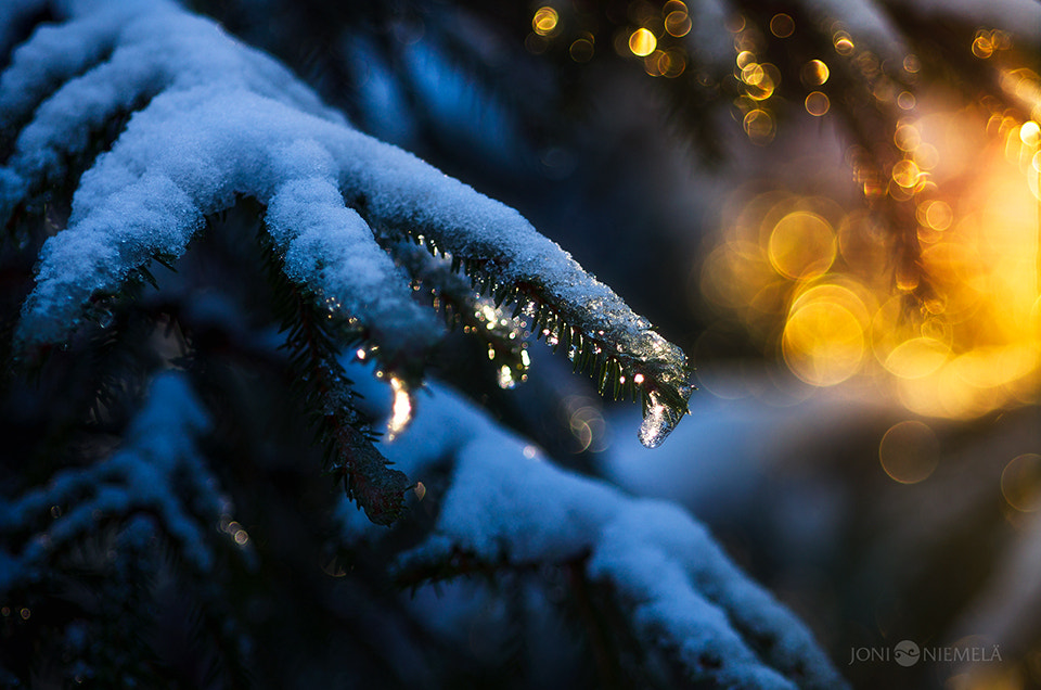 Photograph Spring And Winter by Joni Niemelä on 500px