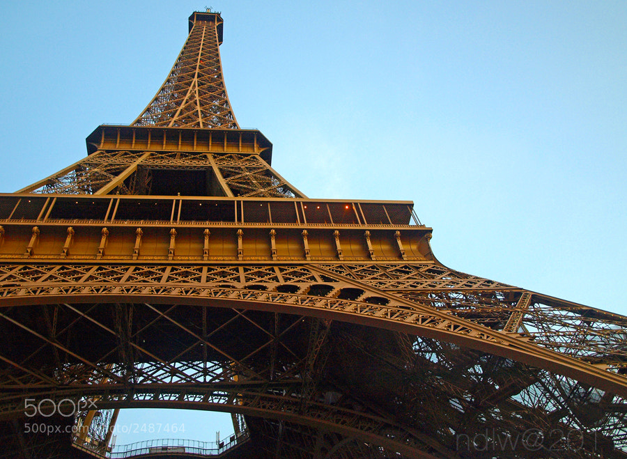 Photograph Eiffel tower by Neema Doma on 500px