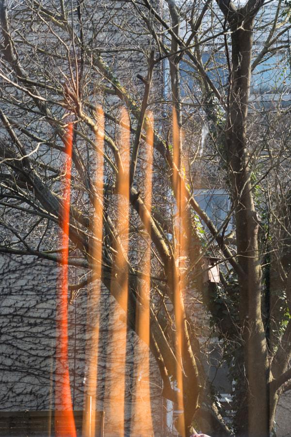 Le rideau (the curtain) de Christine Druesne sur 500px.com