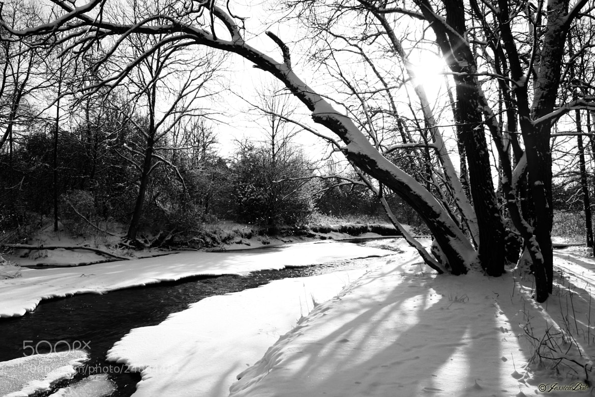 Photograph Winter/2013 by Jessica Bate on 500px