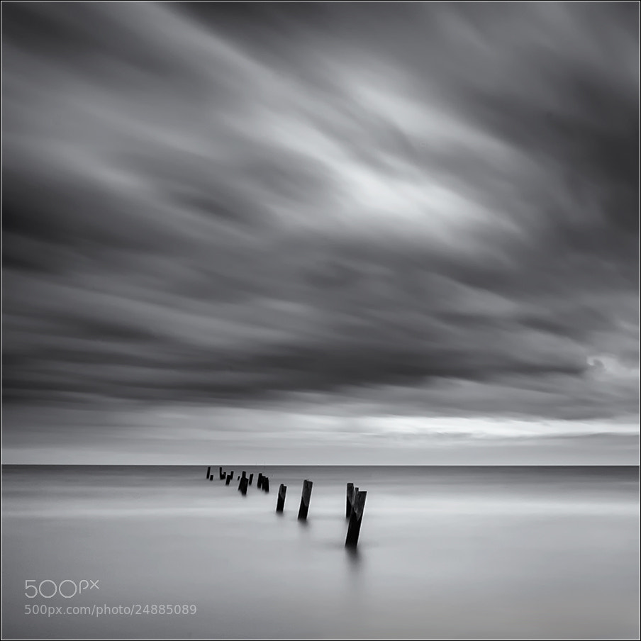 Photograph moody by Steve Martin on 500px
